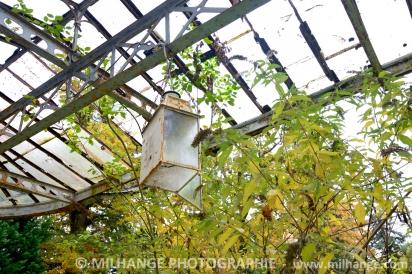 photo-art-chateau-abandonne-decay-abandoned-libourne-bordeaux-15
