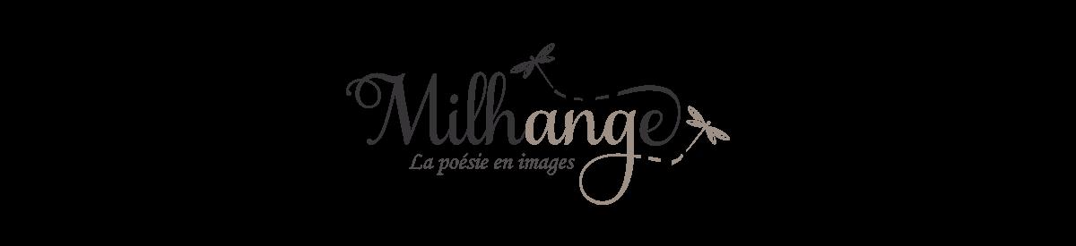 Photographe Saint André de Cubzac Bordeaux Libourne Gironde Charente
