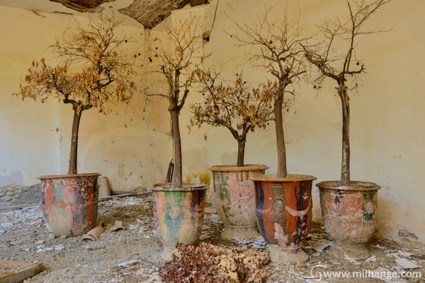 photo-urbex-exploration-urbaine-patio-levant-abandonne-decay-3