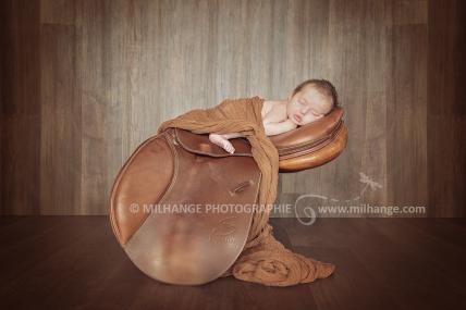 photo-nouveau-ne-bebe-cavalier-cheval-equitation-bordeaux-libourne-gironde