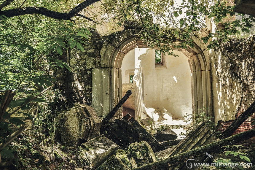 photo-urbex-chateau-abandonne-ruines-vegetation-decay-lost-place-3