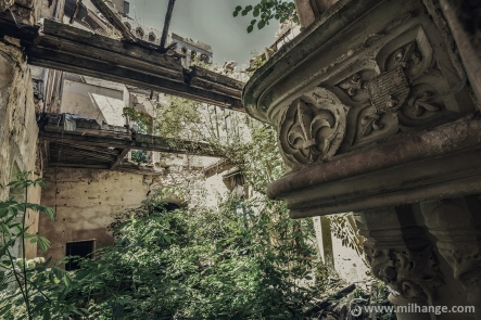 photo-urbex-chateau-abandonne-ruines-vegetation-decay-lost-place-6