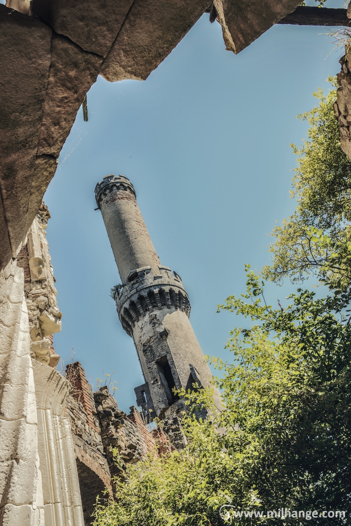 photo-urbex-chateau-abandonne-ruines-vegetation-decay-lost-place-8