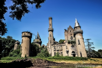 photo-urbex-chateau-abandonne-ruines-vegetation-decay-lost-place