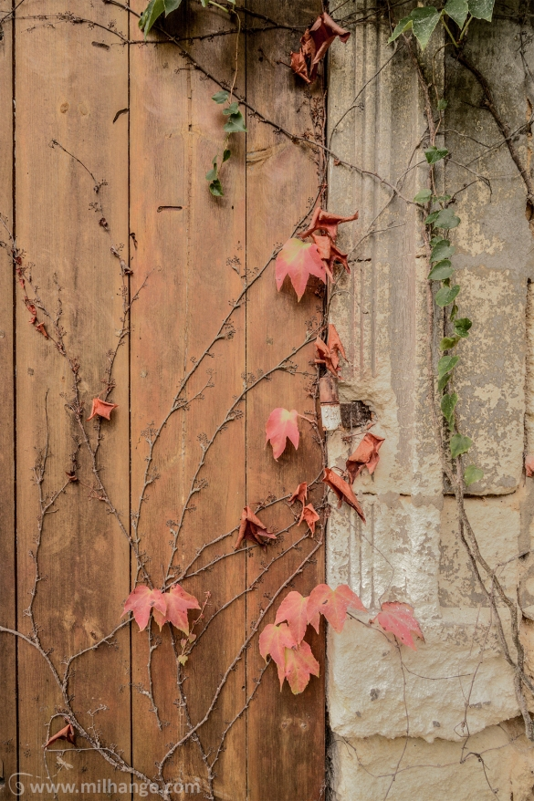 urbex-chateau-abandonne-mille-roses-gironde-aquitaine-4