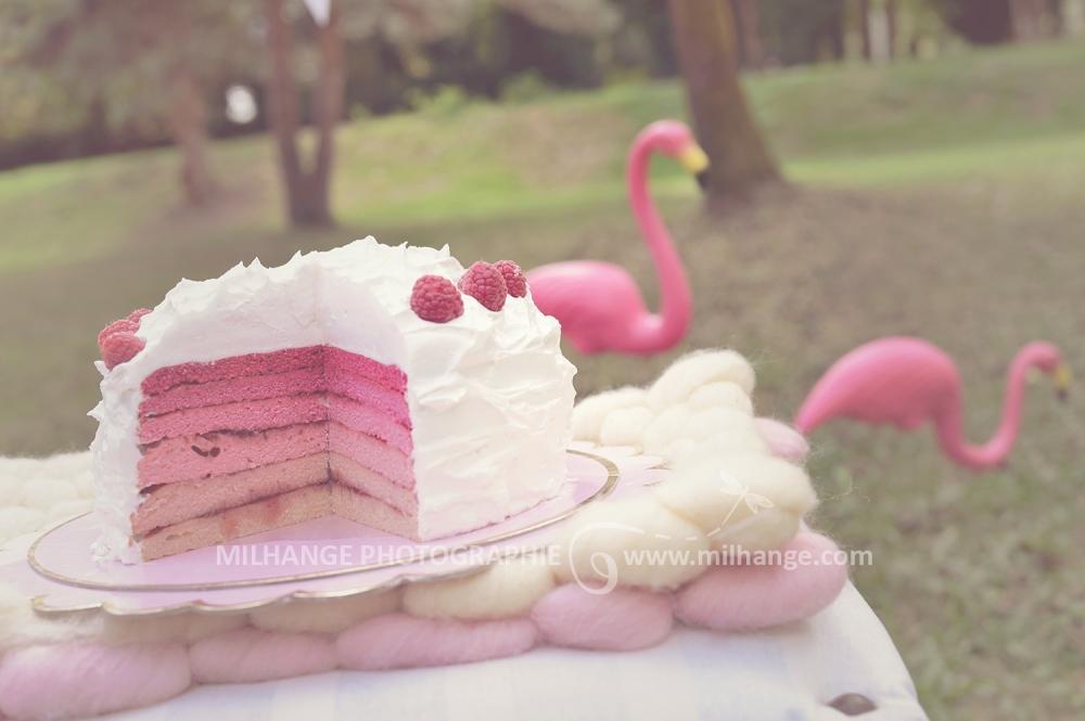 photo-bebe-enfant-anniversaire-rose-bordeaux-libourne-6