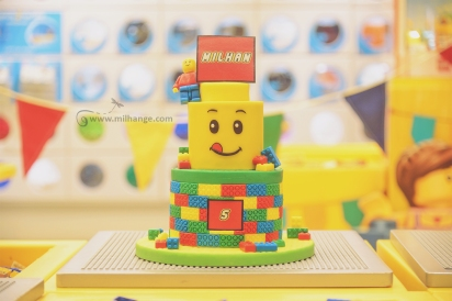photo-enfant-anniversaire-birthday-gateau-lego-bordeaux-saint-andre-cubzac-libourne-10