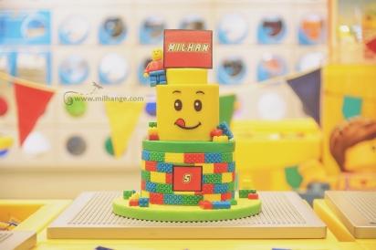 photo-enfant-anniversaire-birthday-gateau-lego-bordeaux-saint-andre-cubzac-libourne-10