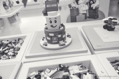 photo-enfant-anniversaire-birthday-gateau-lego-bordeaux-saint-andre-cubzac-libourne-7