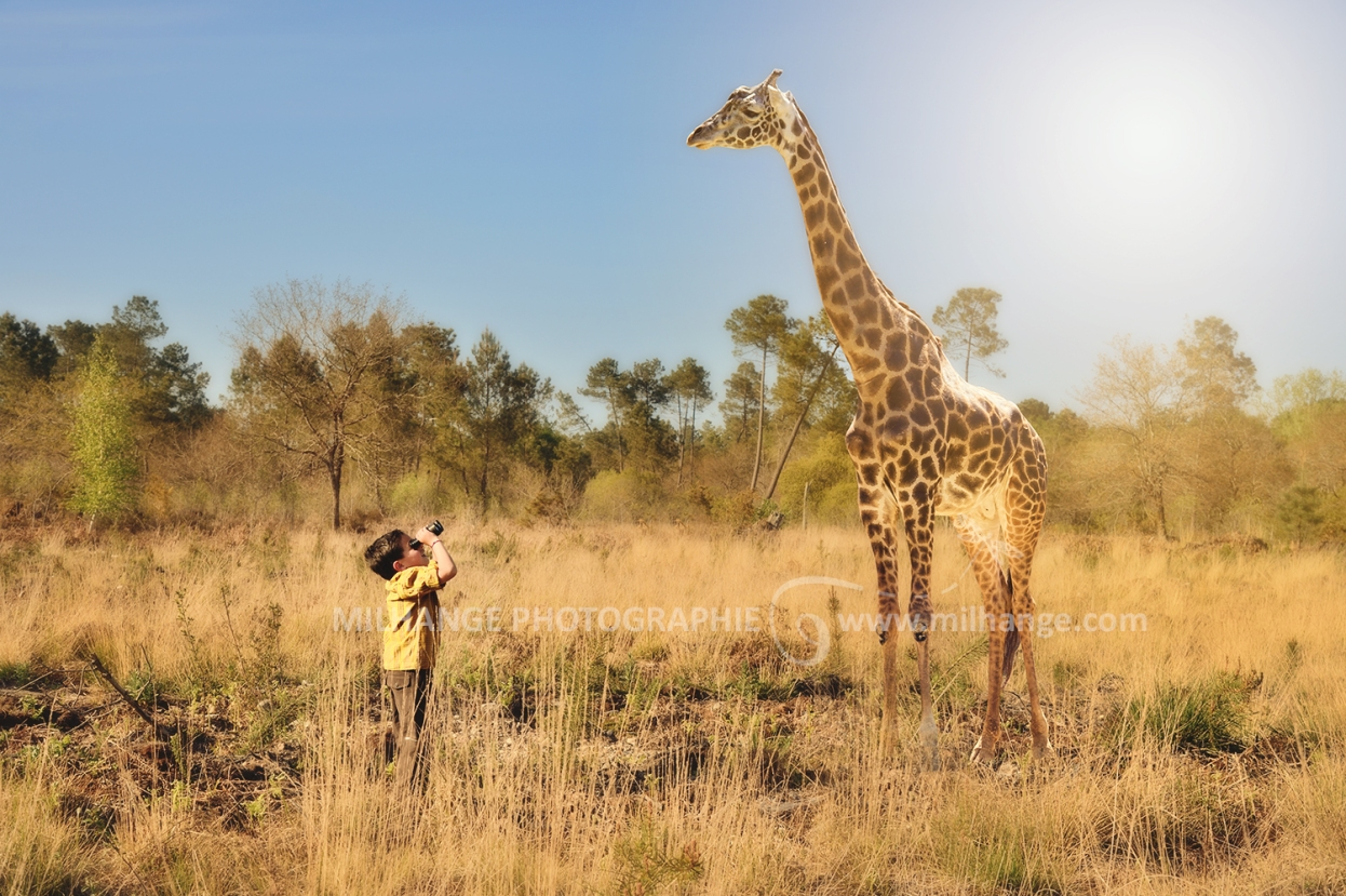 photo-enfant-aventurier-girafe-savane-safari-bordeaux