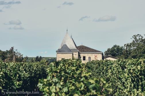 photo-chateau-abandonne-bacchus-lost-castle