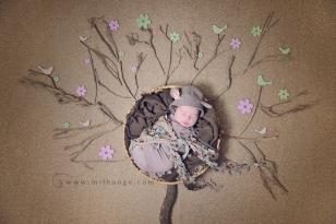 photo-nature-nouveau-ne-arbre-bordeaux-originale-art-1