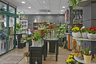 photo-entreprise-boutique-decoration-interieur-fleuriste-fleurine-saint-andre-de-cubzac-10