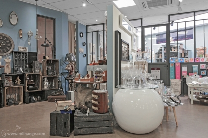 photo-entreprise-boutique-decoration-interieur-fleuriste-fleurine-saint-andre-de-cubzac-11
