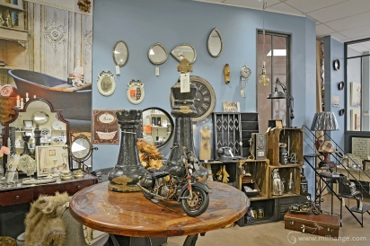 photo-entreprise-boutique-decoration-interieur-fleuriste-fleurine-saint-andre-de-cubzac-2
