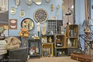 photo-entreprise-boutique-decoration-interieur-fleuriste-fleurine-saint-andre-de-cubzac