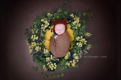 photo-fleur tulipe-enfant-nouveau-ne-bordeaux-libourne-arcachon-4