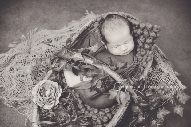 Photographe-merignac-bordeaux-bebe-nouveau-ne-5