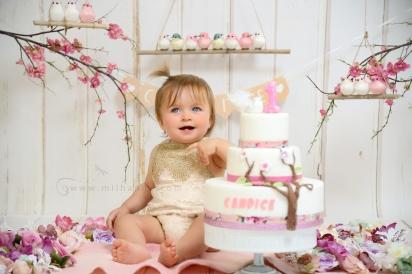 photographe-bordeaux-bebe-fratrie-saintes- anniversaire-arcachon-2